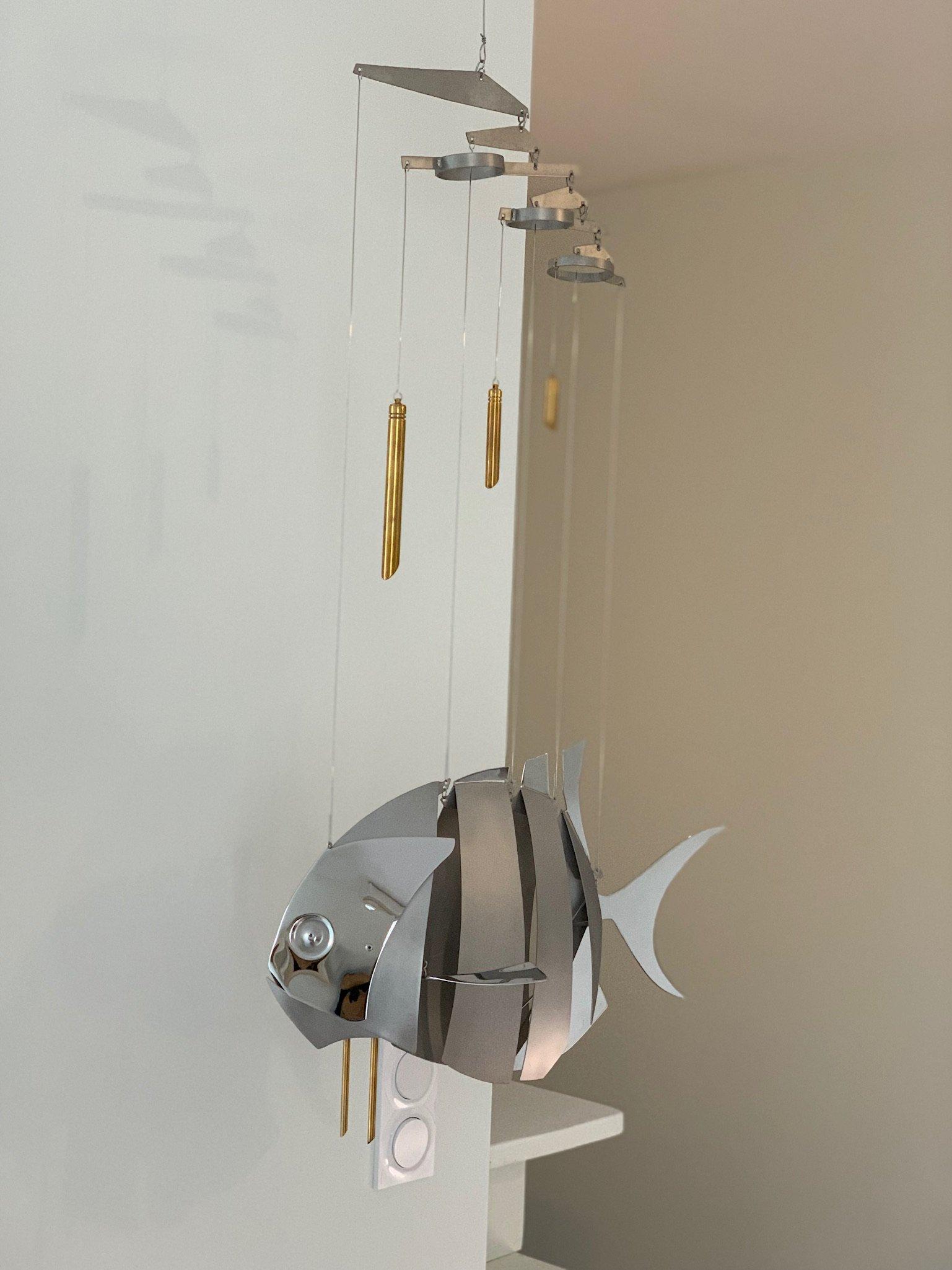 Air fish inox