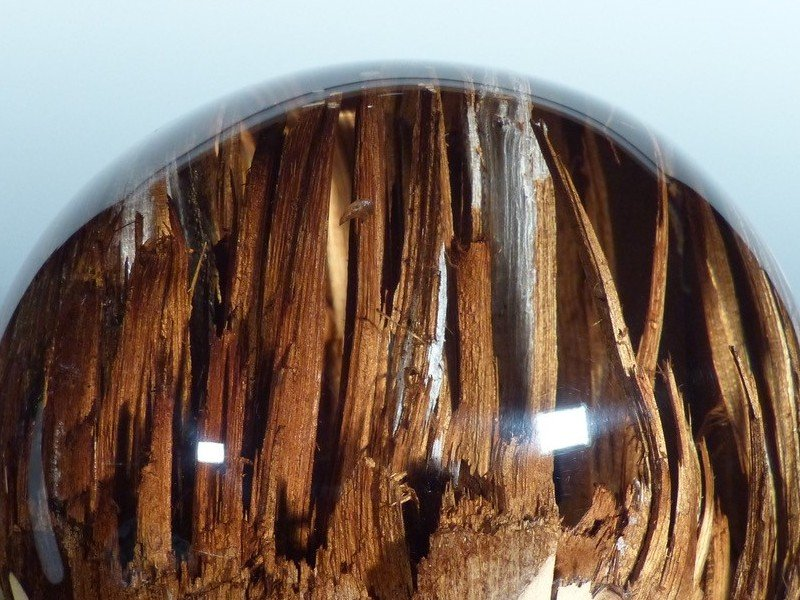sculpture sur bois de Yann Perrier